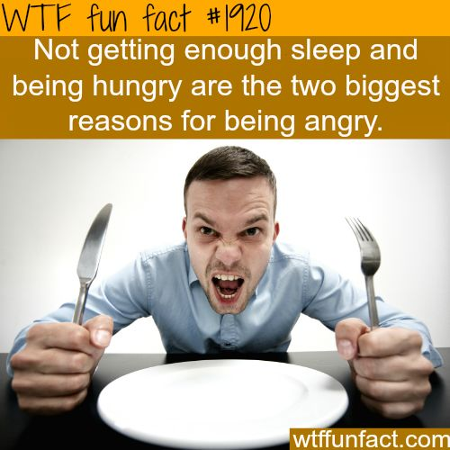sleepy and hungry -WTF fun facts