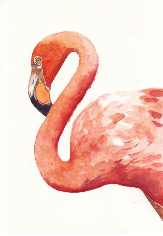 Flamingo ART bird watercolor painting