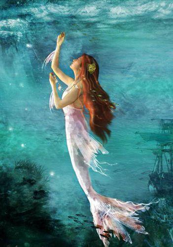 rainbow - mermaids Photo