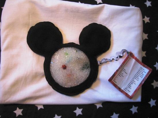 I Spy Disney vacation bag - cute idea