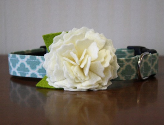 Love this dog collar (without the flower)