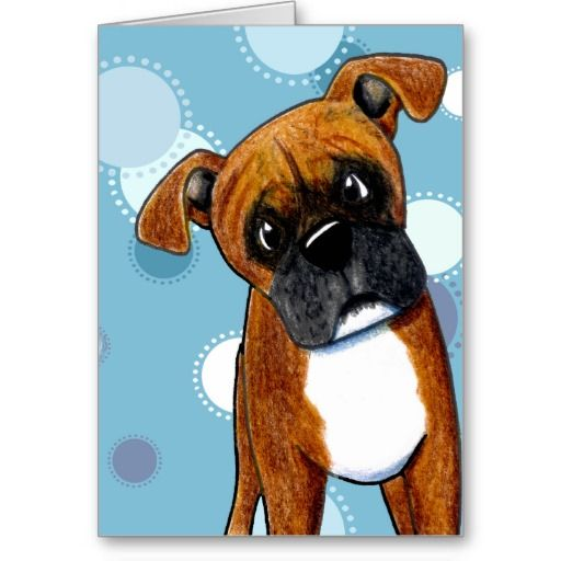 Befuddled Boxer Greeting Cards   Click on photo to purchase. Check out all current coupon offers and save! www.zazzle.com/...