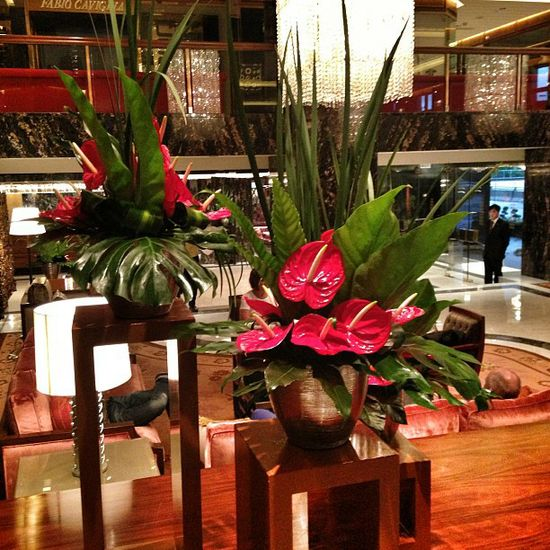 Tropical flower arrangements in the lobby of @MO_HKG. #hongkong