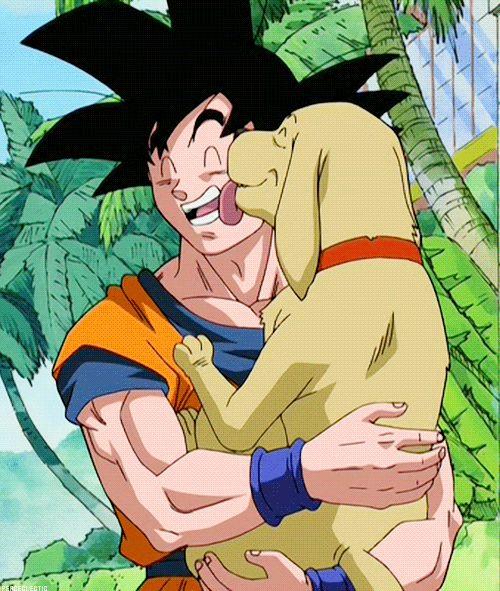 Goku and B