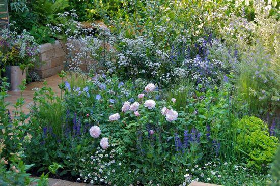 Contemporary Cottage Garden - RHS Chelsea London UK - Jo Thompson Landscape and Garden Design