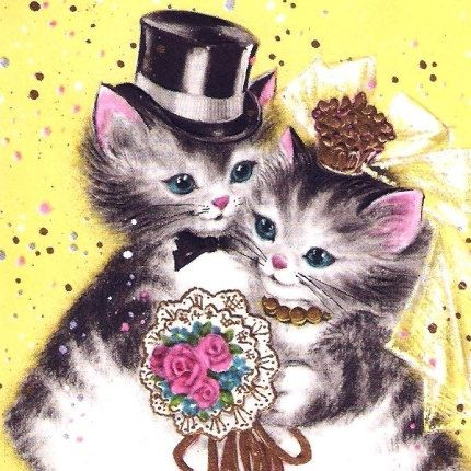 Bride and Groom Kittens Wedding Day