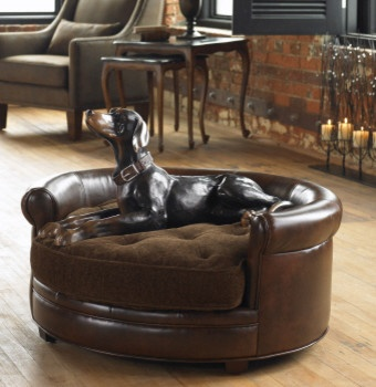 23025 Lucky, Pet Bed by uttermost modern pet accessories
