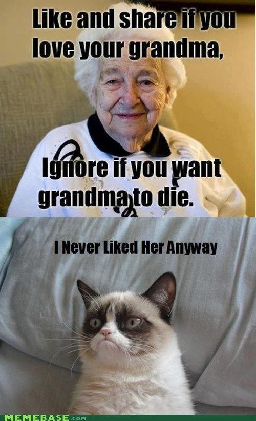 Grumpy Cat. Grandma, I never liked her anyway. (I love my grandma.)