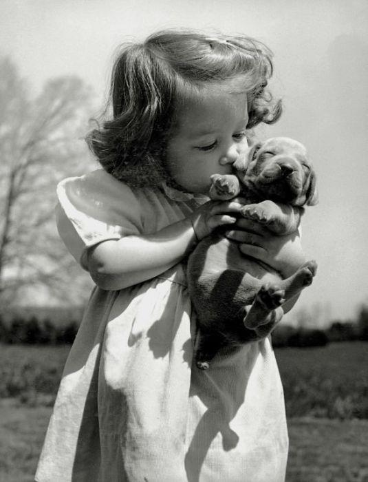 Little girl kisses puppy