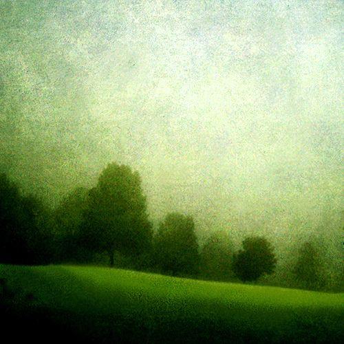 green fog