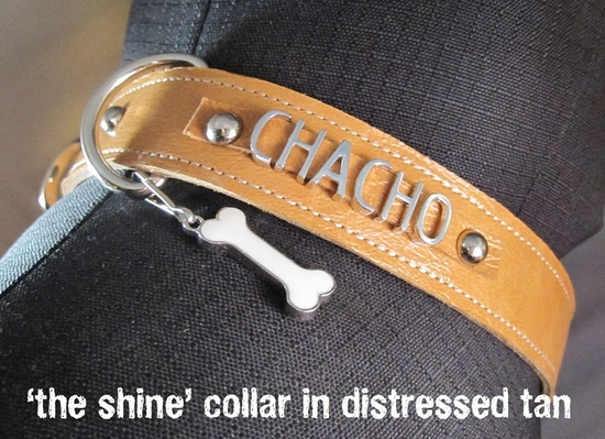 Gangs of New Yorkie Personalized Dog Collar - 'Notorious' or 'Shine' Lettering. $40.00, via Etsy.