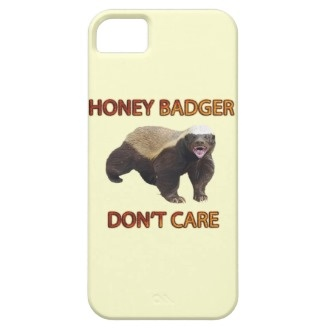 Honey Badger Don't Care, Funny, Cool, Nasty Animal iPhone 5 Cases