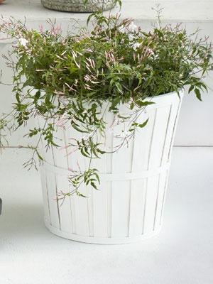 white plant pot from @IKEA USA