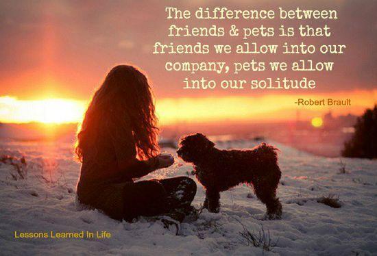 friends & pets