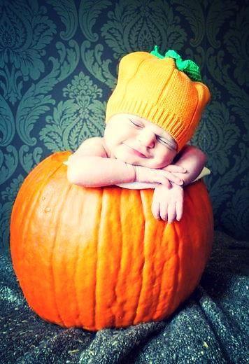 The Sleepy Pumpkin