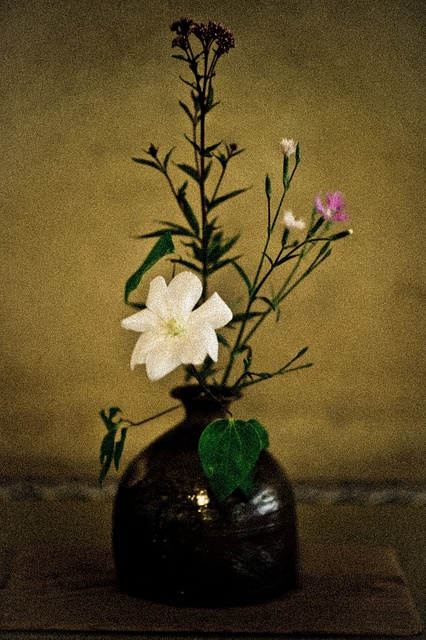Ikebana: Learn how to do Japanese flower arrangements.