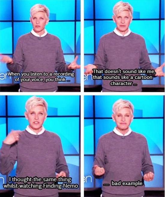 Funny Ellen Degeneres Quotes  25 Pics