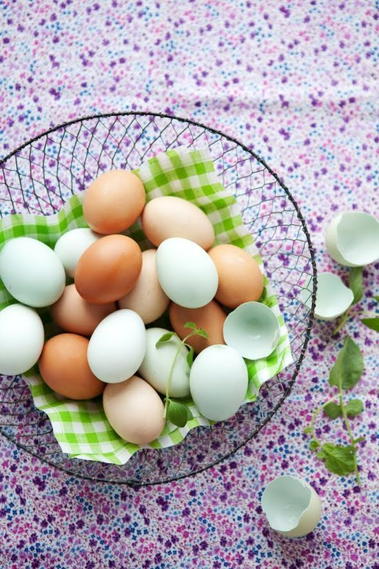 Eggs / Cannelle et Vanille