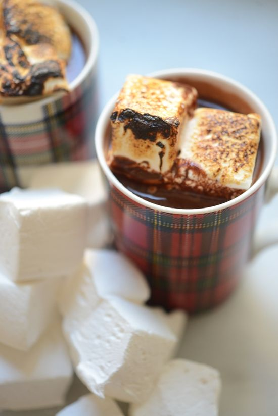 roasted marshmallows in Hot Chocolate + plaid mugs.  I've died and gone to heaven!