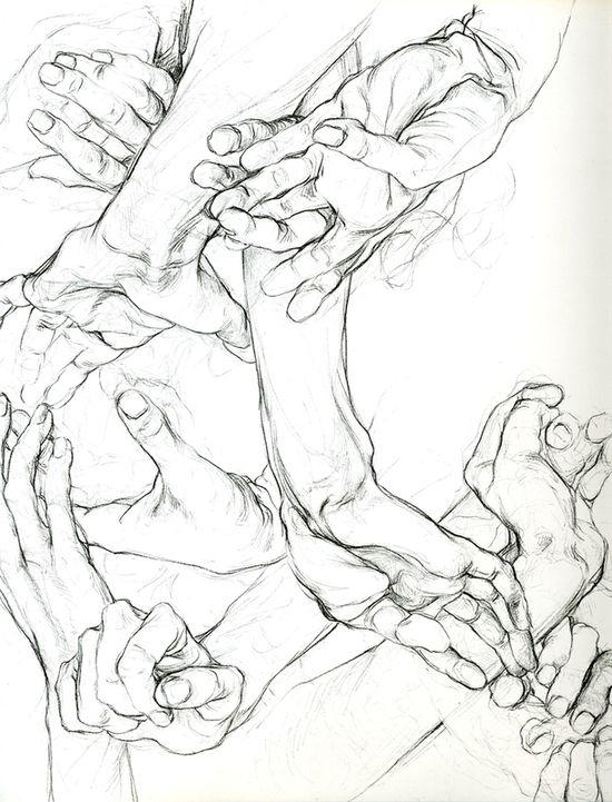 Sarah Simblet, Hands