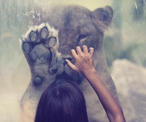 wild!!