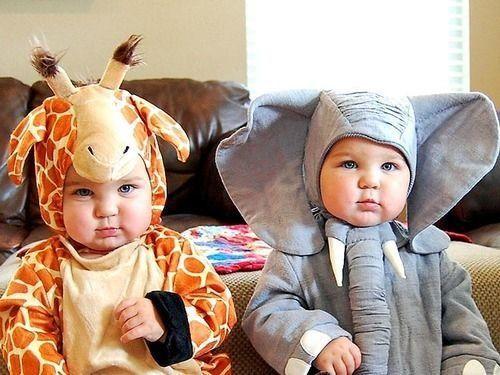 Baby animals : )