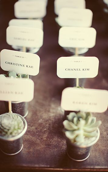 Succulent Placecards