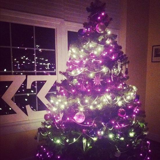 Tri Sigma Christmas tree