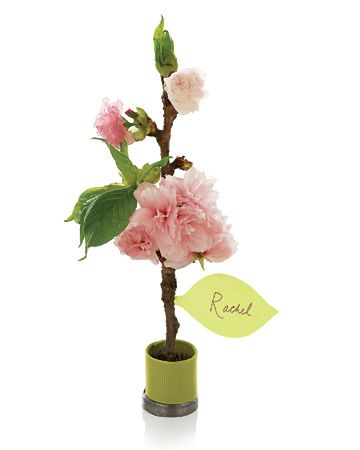 Cherry Blossom Place Cards tutorial. Wow, that makes an impression.