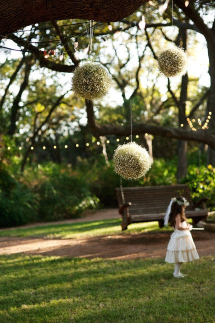 hanging baby's breath