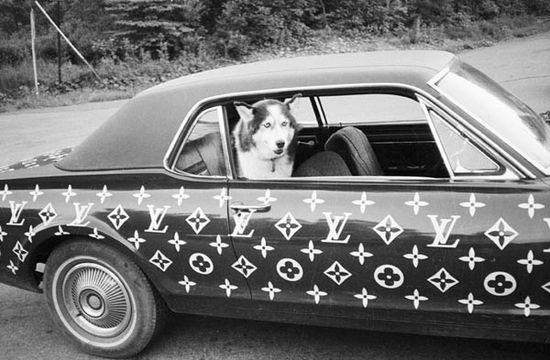 RICKY POWELL - LV CAR