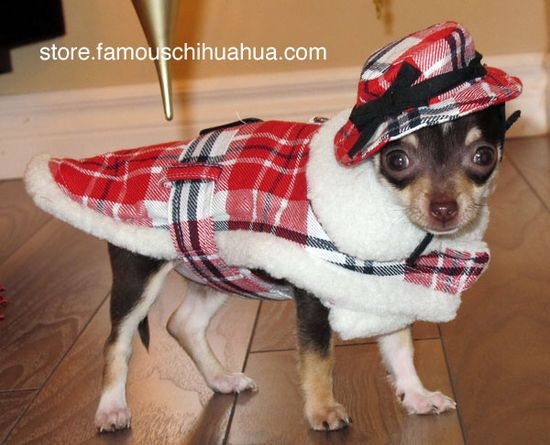Ugly Christmas Sweater Ideas for Dogs - Parade