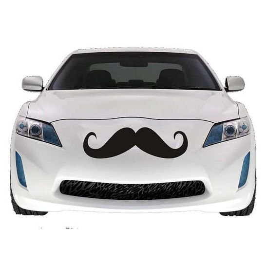 I  mustache you a question...would you want this on your car?