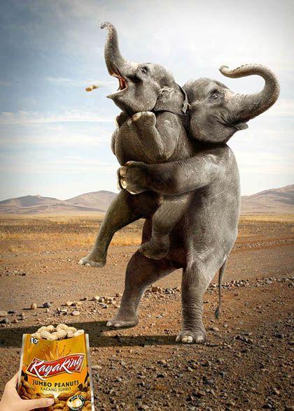 ad with Elephant choking on peanut