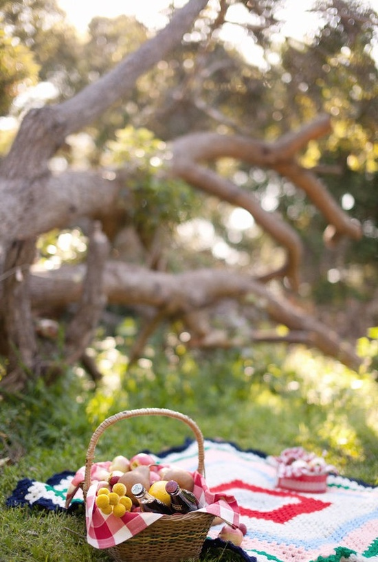 picnic setting.