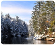 Wisconsin Dells scenery and nature is breathtakingly beautiful. Take a scenic tour of the Wisconsin River and prepare yourself for oohs and ahhs.