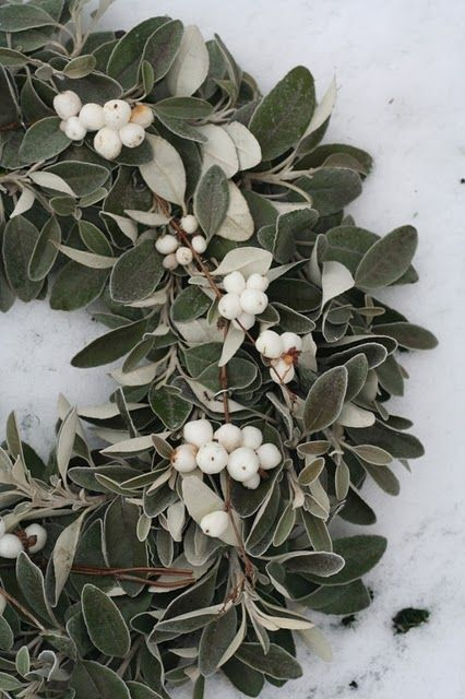 Snowberry wreath for Christmas