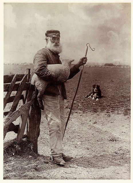 """A photograph titled 'Ninety and Nine', showing an elderly shepherd carrying a lamb and holding a crook, taken by Colonel Joseph Gale (c 1835-1906) in 1890. This image of rustic life shows a shepherd resting at a gate to his field, a lamb under his arm. His faithful sheep-dog waits in the background for his master's next command.    "" 'Ninety and Nine' is a Biblical reference. The Gospel writer, Matthew, recounts Jesus' parable, 'The Lost Sheep' — about a shepherd with a 100 sheep who goes out"