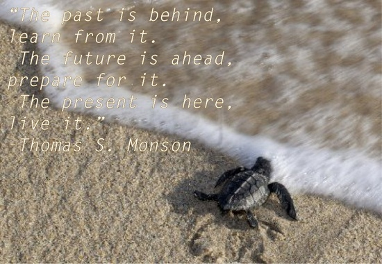 """I like turtles and the quote. """"The past is behind, learn from it. The future is ahead, prepare for it. The present is here, live it.""""- Thomas S. Monson  #quote #lds #President Monson #life"""