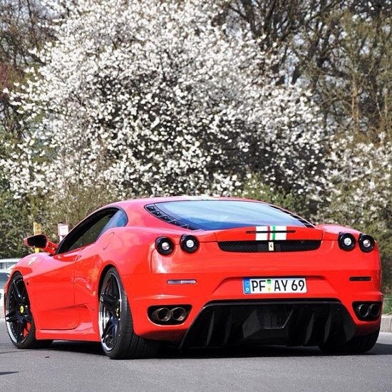Springtime - Ferrari F430 #ferrari vs lamborghini #luxury sports cars