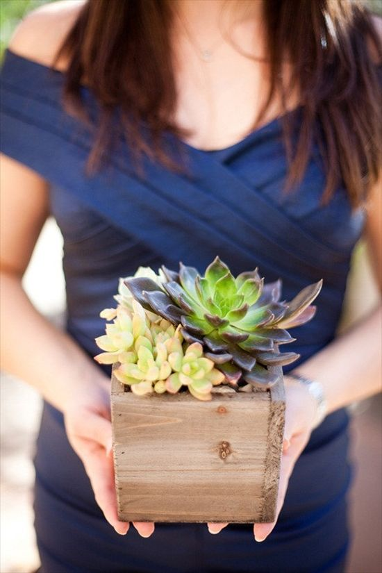succulents in wood box - 43 best wine themed wedding ideas