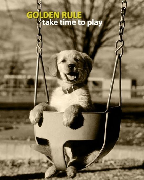 Golden Rule... take time to play!