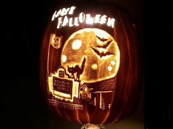 Pet Happy Halloween pumpkin carved by Brad Smith