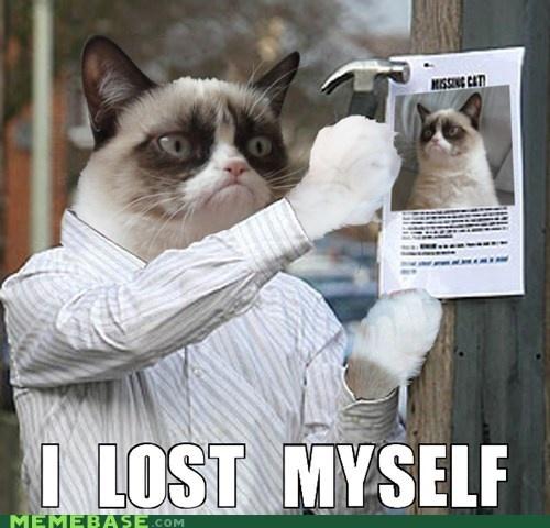 Grumpy Cat is lost.