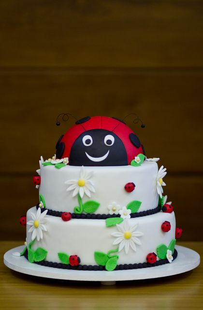Cake at a Ladybug Party