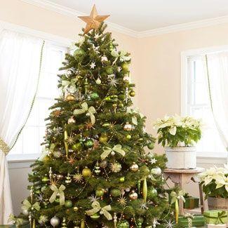 tree - ideasforho.me/tree/ -  #home decor #design #home decor ideas #living room #bedroom #kitchen #bathroom #interior ideas