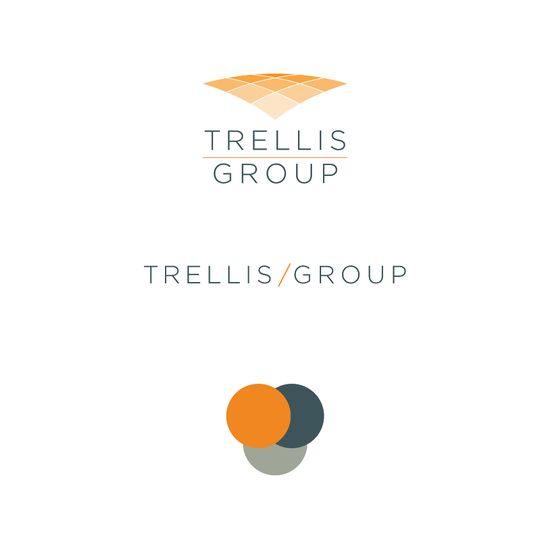 TRELLIS - Logo Design // Branding - Fits All Who Fit In