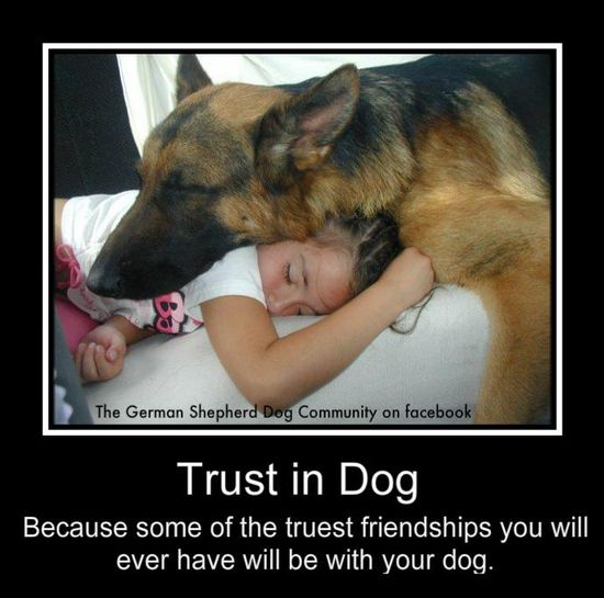 Trust in Dog: Because some of the truest friendships you will ever have will be with your dog.