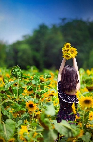 #sunflowers#child#field