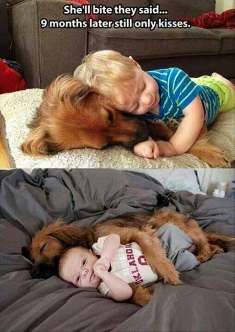 love baby & dog #kids $baby